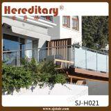 Pasamano de cristal de madera de la escalera del SUS 304 del chalet 316 decorativos de interior (SJ-H011)