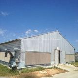Fabrication de construction en acier Structure en acier léger Maisons à poulet