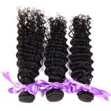 O Weave Kinky Mongolian do cabelo Curly do Virgin 3 pacotes, cabelo Curly Kinky Mongolian barato do Virgin tece pacotes Curly do cabelo humano de 100%