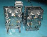 Chinees Professioneel Prototype /Mould/het Bewerken van de Vorm het Afgietsel van de Injectie (lw-03554)