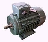 Motore a corrente alternata Trifase di Ie3 3/4-270HP