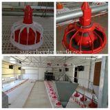 Alimentadores de frango automáticos para produção de frangos de corte