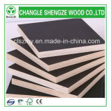 16mm Finger Joint Core Waterproof Shuttering Plywood