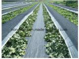 A longo prazo ambientalmente seguros Barreira de controle de plantas daninhas em plástico