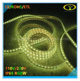 5050SMD LED RGBW luz de Natal com Aprovação ETL
