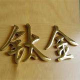 3D Roestvrij staal Letters van Finish Built up van het titanium