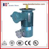 Регулирование частоты вращения коленчатого вала индуктивного электрический двигатель переменного тока с высокого напряжения