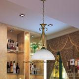 Osten-Art-einfaches hängendes hängendes Innenlicht mit Glas
