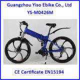LCD 디스플레이를 가진 접히는 산 크랭크 또는 중간 드라이브 E 전기 자전거