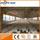 Matériel automatique d'aviculture pour la ferme d'éleveur de grilleur