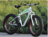 سمينة إطار العجلة ثلج جبل رمل شاطئ درّاجة كهربائيّة