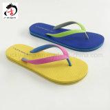 簡単な様式明るいカラー女性の靴