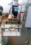 Máquina automática de descascamento de fruta de alta velocidade, Melon Peeler