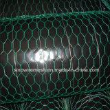 Rete metallica esagonale rivestita del PVC con (CE e SGS)