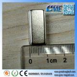 Il magnete del blocchetto del magnete del neodimio con la sporgenza ha fatto un passo magnete