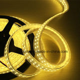 240LEDs/M Waterproof IP65 Doubles Row MDS 2835 LED Strip