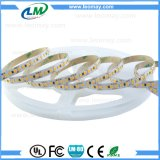 12V 180LEDs/m SMD2835 dimmable LED 지구