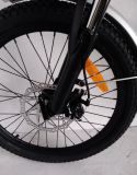 كهربائيّة يطوي درّاجة بطّاريّة داخلا