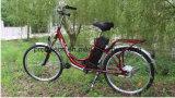 Bicyclette électrique de bâti en acier avec En19154