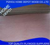 compensato commerciale marino del foglio per impiallacciatura del pioppo di 1220X2440X21mm