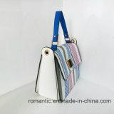 Trendy Pu Dame Handbags Popular Women Hand Zak (LY060282)