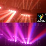 8X10W RGBW 4in1 단계 광속 LED 거미 이동하는 맨 위 빛