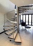 Escalier spiralé en verre/en bois avec la pêche à la traîne d'acier inoxydable
