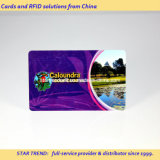 Club de afiliación tarjeta hecha de PVC con la norma ISO Tamaño (CR80)