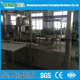 Automatischer Massen-Saft-Flaschenabfüllmaschine-/Fruchtsaft-füllendes Gerät