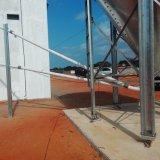 Casa de pollo del marco de acero para las parrillas con el equipo automático