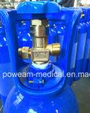 De naadloze Cilinder van het Aluminium van het Gas van Co2 van het Helium van het Argon van de Waterstof van de Zuurstof van het Staal