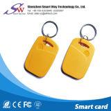Tipos de forma personalizada de RFID portátil Chaveiro de ABS