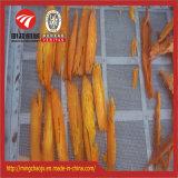 Equipos de secado profesional fruta alimentos // Máquina de secado de hierbas