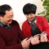 Instrument van de Therapie van de Energie van de Laser van de pols het Koude voor Cardiovasculaire en HersenZiekte