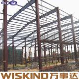 Estructura de acero grande prefabricada del fabricante profesional barato con el certificado del SGS