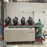 Kaltlagerungs-verwendeter niedrige Temperatur-Schrauben-Kompressor mit Bitzer Kompressor