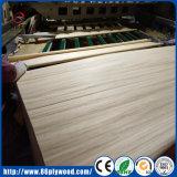 Garde AAAの偵察の白0.5mmの安いポプラの木製の表面ベニヤ