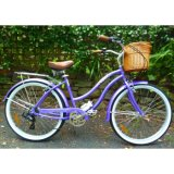 Personnalisé Colorful Plage Bike (ZL-BC-003)