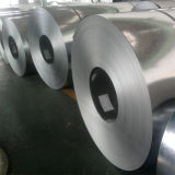 De warmgewalste Gegalvaniseerde Steelband van de Strook Staal van Tom9#