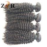 Cheveu brésilien non transformé d'armure bon marché bouclée de cheveux humains de la livraison rapide