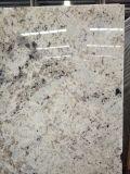 Le granit en pierre blanc de perle persane Polished en gros bloque des galettes d'étape