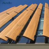 Lumbrera de aluminio de Sun de las aletas verticalmente perforadas para las fachadas del edificio