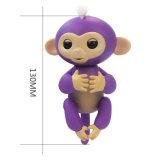 Le singe de bébé de doigt joue des poissons jeunes