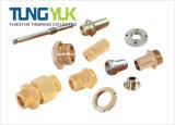 Précision de haute qualité CNC tournant Usinage de pièces de cuivre