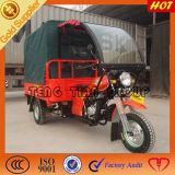 Ducar Hot Selling 200cc Three Wheel Cargo Motorcycles