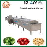Blanchiment à la vapeur de fruits et légumes faisant cuire la machine de blanchisseur