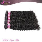 Один человеческие волосы Donor монгольского курчавого естественного Afro Kinky