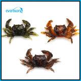 Choix de couleurs en gros de l'attrait trois de pêche d'attrait de crabe d'attrait de pêche du crabe Wh0011
