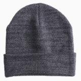 Cappello del Beanie/cappelli/cappello lavorati a maglia di inverno (BH-01)