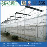 Rete di mosca di successo di /Vegetables delle reti di mosca della frutta del prodotto agricolo del prodotto anti /Greenhouse anti